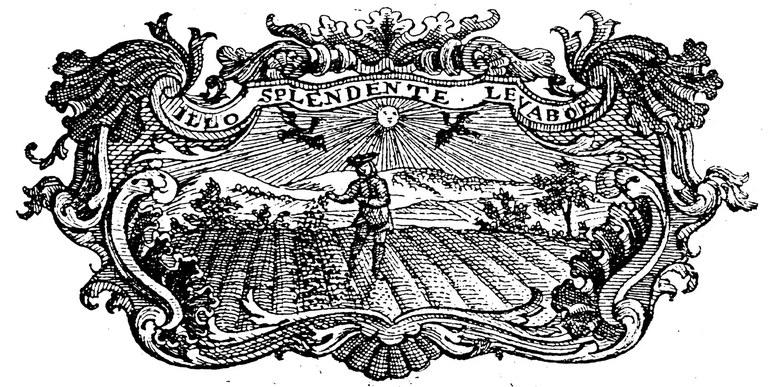 Allegorie Der Sähmann auf dem Feld